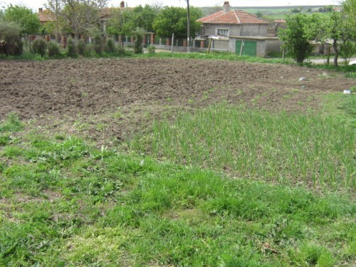 Property in Bulgaria Dobrich