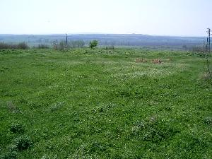 land in Dobrich in Bulgaria