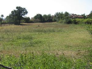 land in Lesovo in Bulgaria