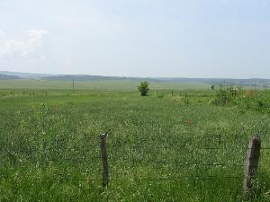 land in Malomirovo in Bulgaria