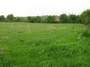 land in Polyna in Bulgaria