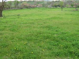 land in Valcha Poljana in Bulgaria