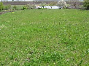 land in Pobeda in Bulgaria