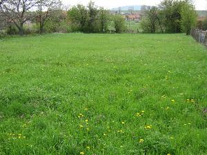 land in Golymo Krushevo in Bulgaria