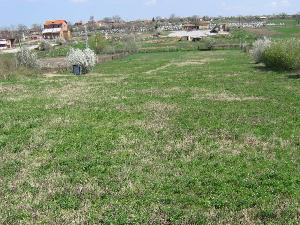 land in Malomir in Bulgaria