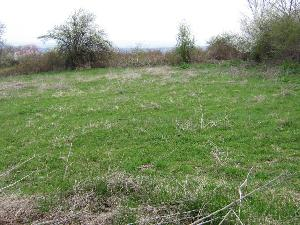 land in Planinovo in Bulgaria
