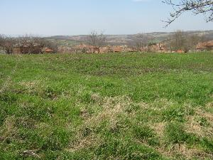 land in Melnitza in Bulgaria
