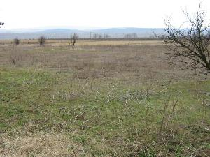 land in Mamarchevo in Bulgaria