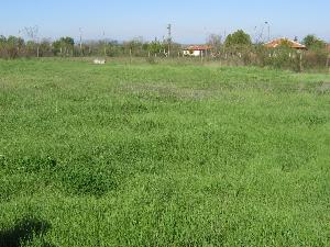 land in Boyanovo in Bulgaria